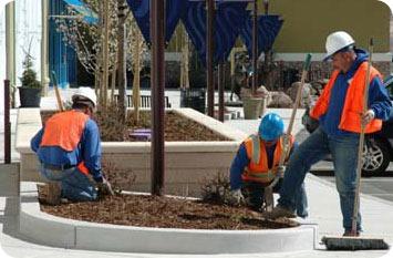 landscapinglanding